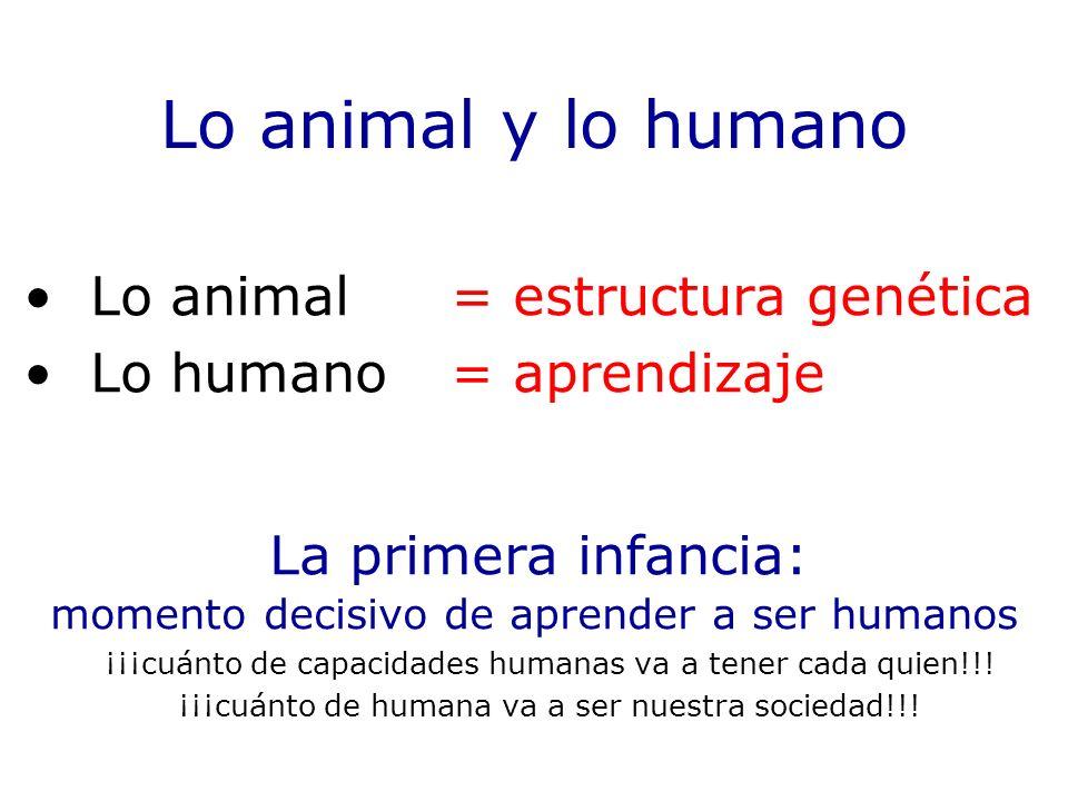 Lo animal y lo humano Lo animal = estructura genética Lo humano = aprendizaje La primera infancia: momento decisivo de aprender a ser humanos ¡¡¡cuánt