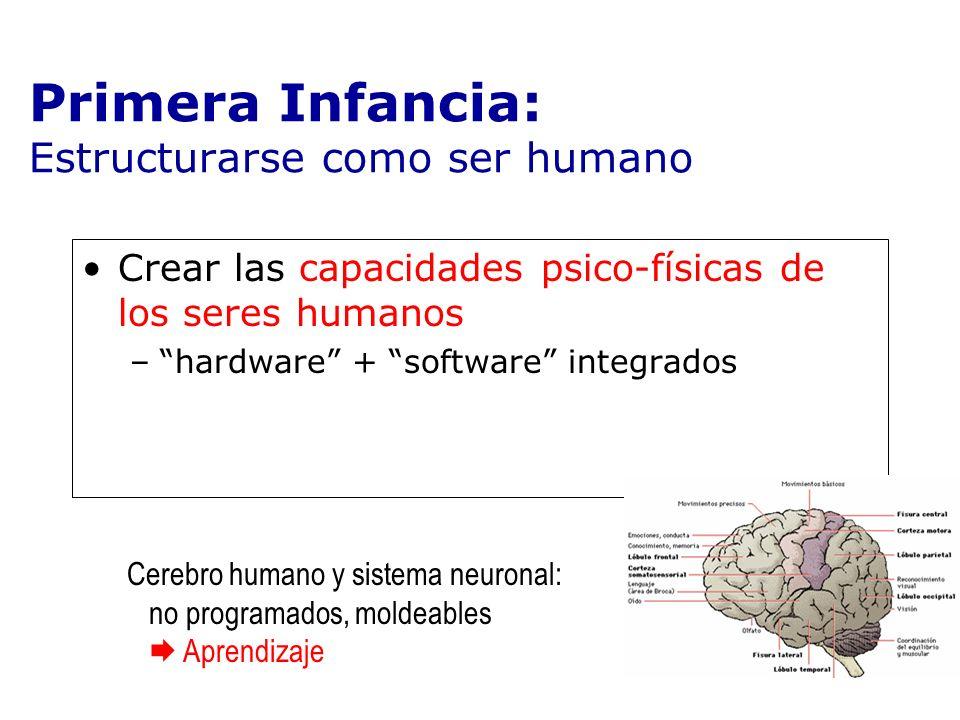 Crear las capacidades psico-físicas de los seres humanos –hardware + software integrados Primera Infancia: Estructurarse como ser humano Cerebro human