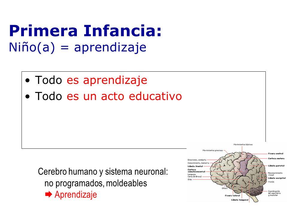Todo es aprendizaje Todo es un acto educativo Primera Infancia: Niño(a) = aprendizaje Cerebro humano y sistema neuronal: no programados, moldeables Ap