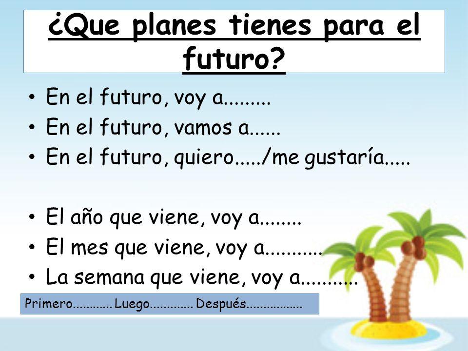 ¿Que planes tienes para el futuro. En el futuro, voy a.........