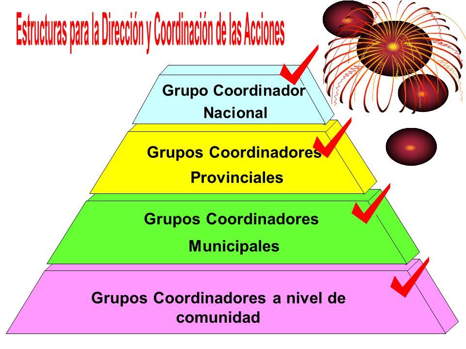 Grupos Coordinadores a nivel de comunidad Grupos Coordinadores Municipales Grupos Coordinadores Provinciales Grupo Coordinador Nacional