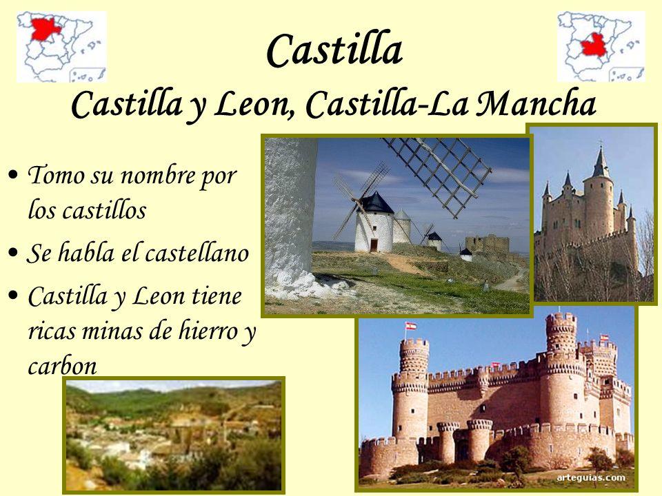 Castilla Castilla y Leon, Castilla-La Mancha Tomo su nombre por los castillos Se habla el castellano Castilla y Leon tiene ricas minas de hierro y car