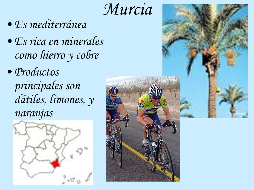 Murcia Es mediterránea Es rica en minerales como hierro y cobre Productos principales son dátiles, limones, y naranjas