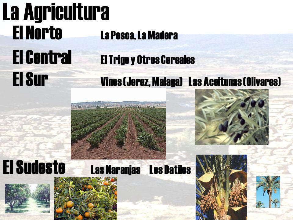 La Agricultura El Norte La Pesca, La Madera El Central El Trigo y Otros Cereales El Sur Vinos (Jerez, Malaga)Las Aceitunas (Olivares) El Sudeste Las N