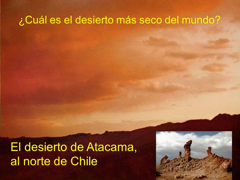 ¿Cuál es el desierto más seco del mundo? El desierto de Atacama, al norte de Chile