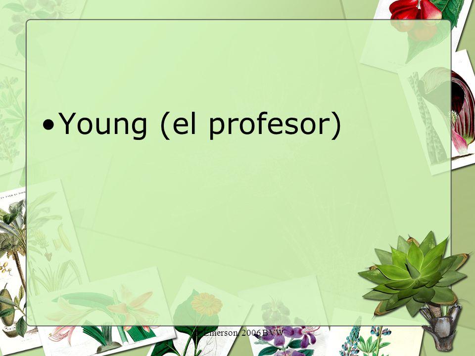 M. Emerson, 2006 BVW Young (el profesor)
