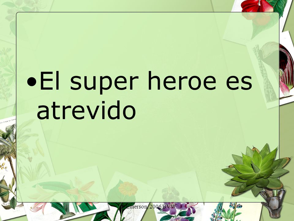 M. Emerson, 2006 BVW El super heroe es atrevido