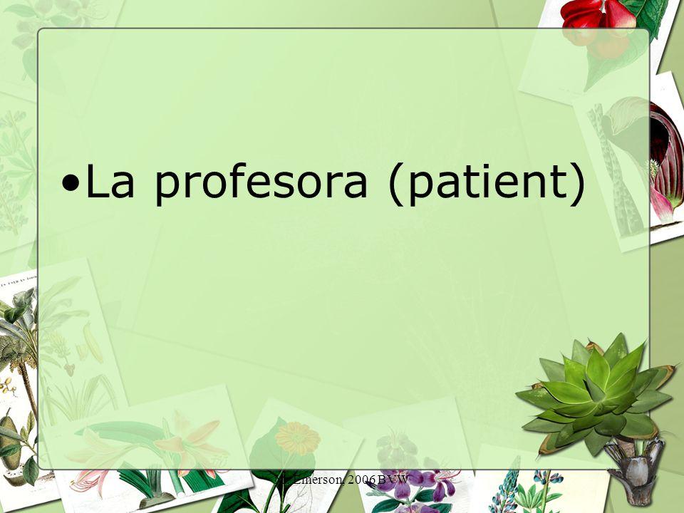 M. Emerson, 2006 BVW La profesora (patient)