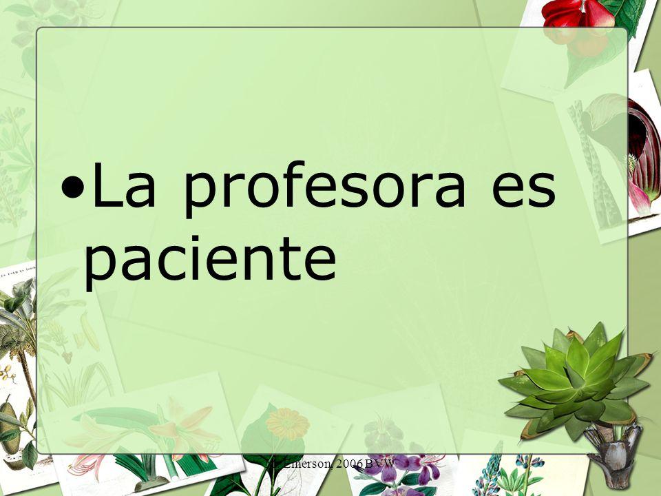 M. Emerson, 2006 BVW La profesora es paciente