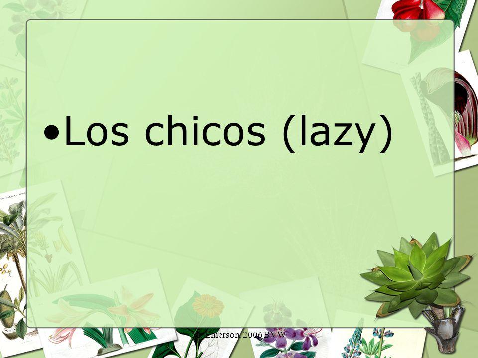 M. Emerson, 2006 BVW Los chicos (lazy)