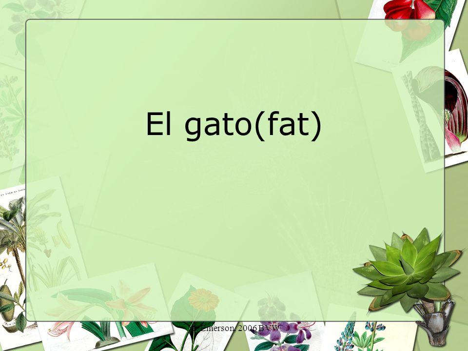 M. Emerson, 2006 BVW El gato(fat)