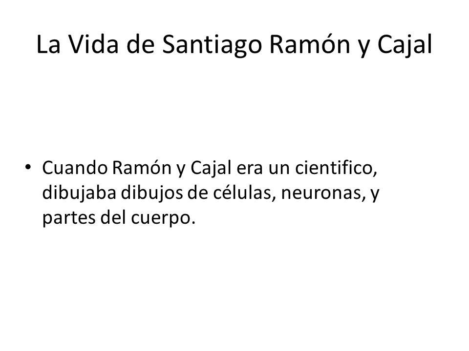 La Vida de Santiago Ramón y Cajal Cuando Ramón y Cajal era un cientifico, dibujaba dibujos de células, neuronas, y partes del cuerpo.