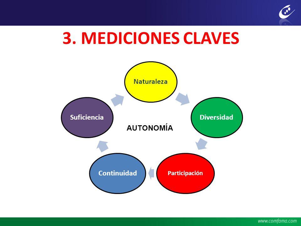 3. MEDICIONES CLAVES NaturalezaDiversidad Participación ContinuidadSuficiencia AUTONOMÍA