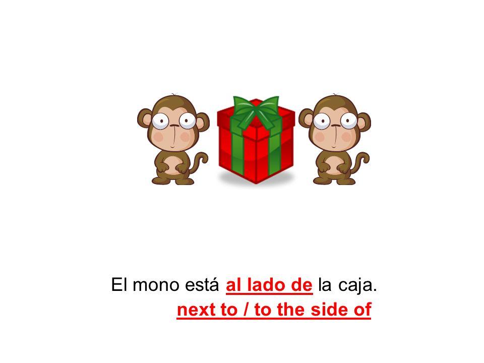 El mono está al lado de la caja. next to / to the side of