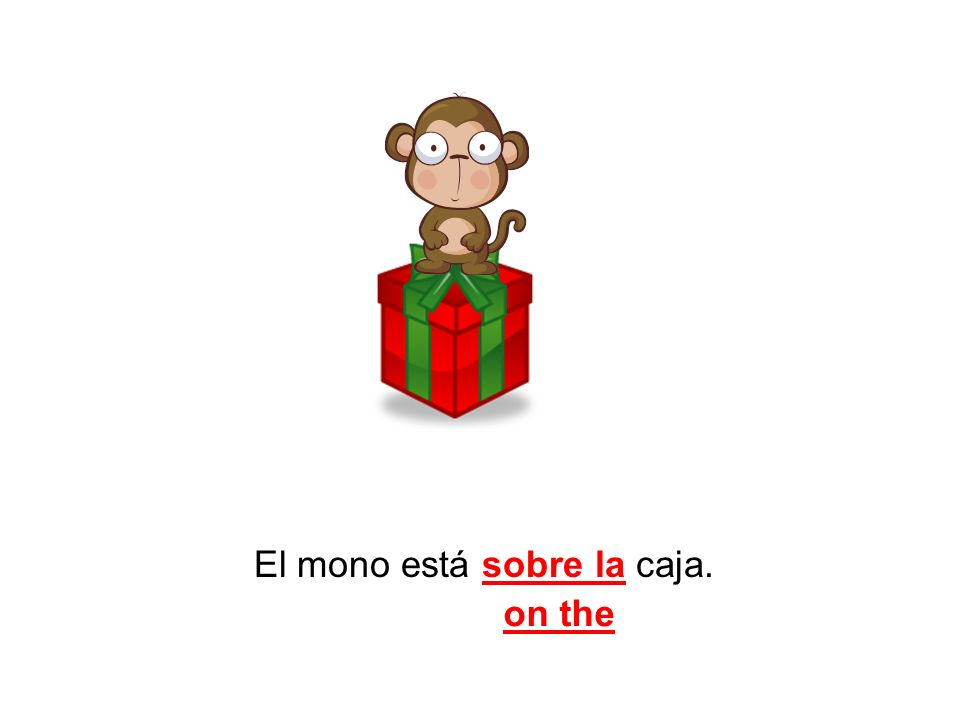El mono está sobre la caja. on the