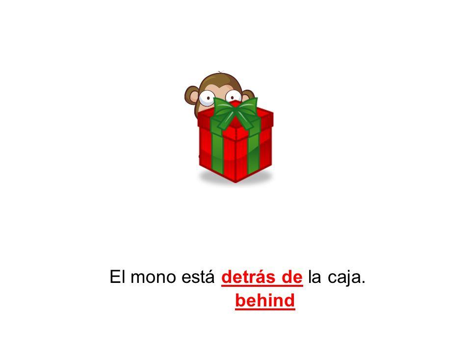 El mono está detrás de la caja. behind