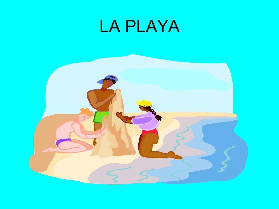 PRACTICAR EL SURFING