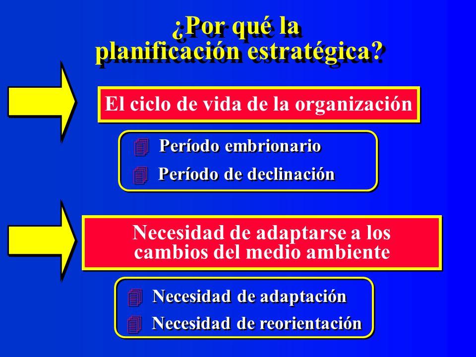 Etapa 7: Ejecución y evaluación del plan estratégico Ejecución y evaluación del plan estratégico Incorporar las metas estratégicas y las estrategias de acción en el plan operativo anual Incorporar las metas estratégicas y las estrategias de acción en el plan operativo anual Control y seguimiento de su ejecución Control y seguimiento de su ejecución Ajustes al plan si se requiere
