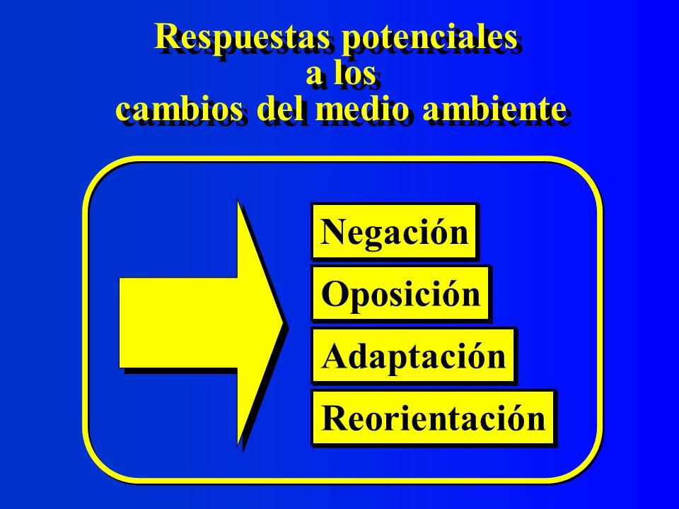 Metas estratégicas Definición Son los grandes resultados que se propone lograr una organización en un tiempo determinado Son los grandes resultados que se propone lograr una organización en un tiempo determinado