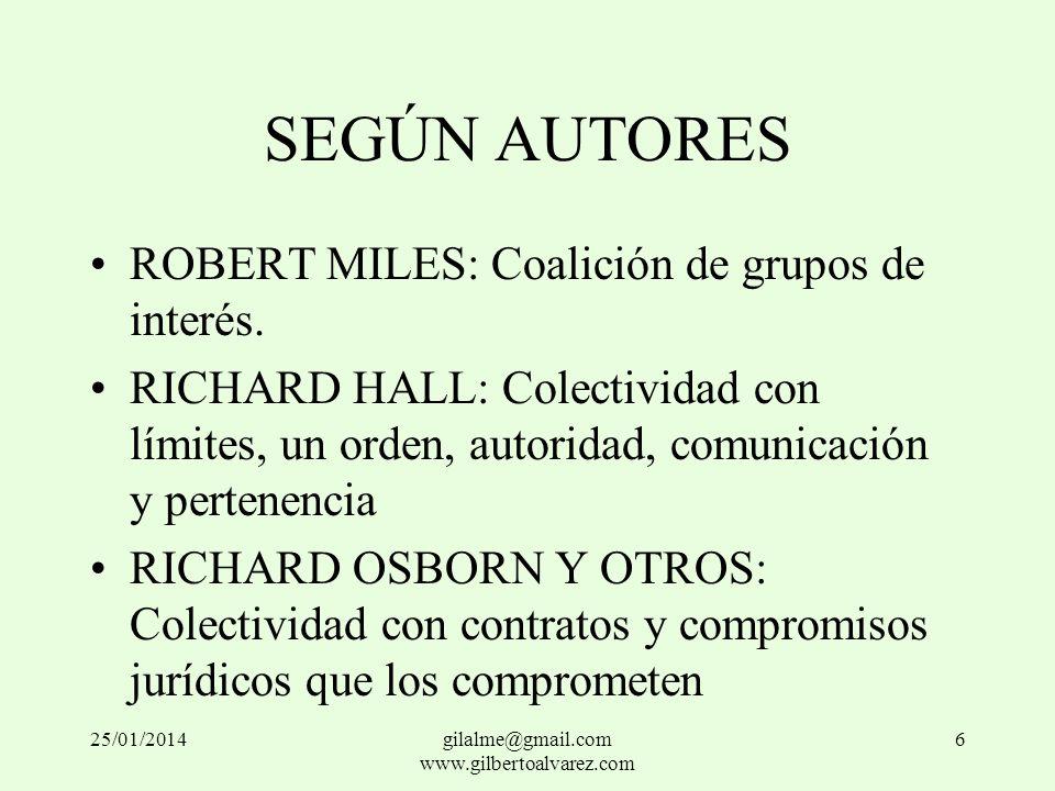 SEGÚN AUTORES ROBERT MILES: Coalición de grupos de interés. RICHARD HALL: Colectividad con límites, un orden, autoridad, comunicación y pertenencia RI