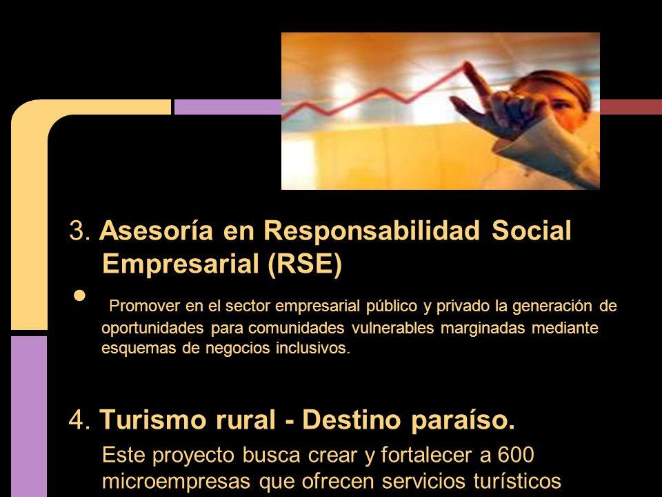 3. Asesoría en Responsabilidad Social Empresarial (RSE) Promover en el sector empresarial público y privado la generación de oportunidades para comuni