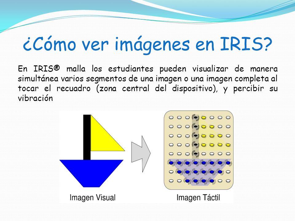 ¿Cómo ver imágenes en IRIS? En IRIS® malla los estudiantes pueden visualizar de manera simultánea varios segmentos de una imagen o una imagen completa