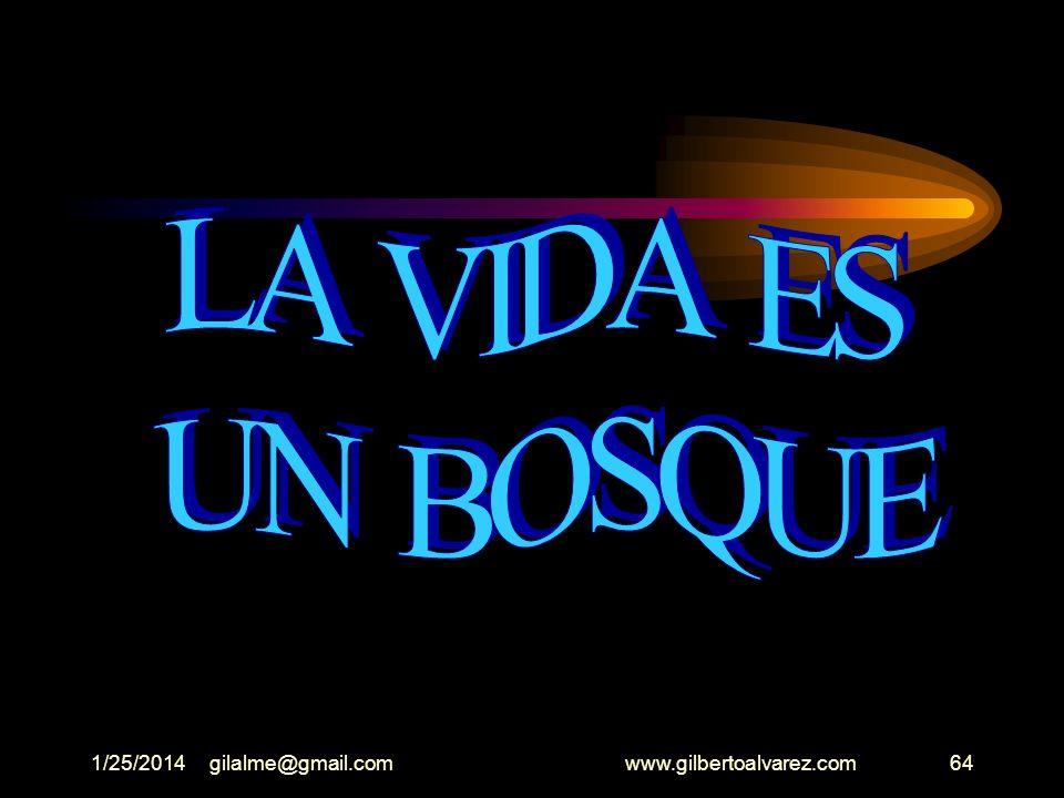 1/25/2014gilalme@gmail.com www.gilbertoalvarez.com63