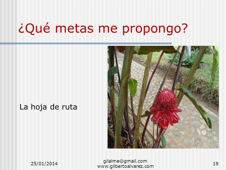 gilalme@gmail.com www.gilbertoalvarez.com ¿Qué metas me propongo? La hoja de ruta 25/01/201419