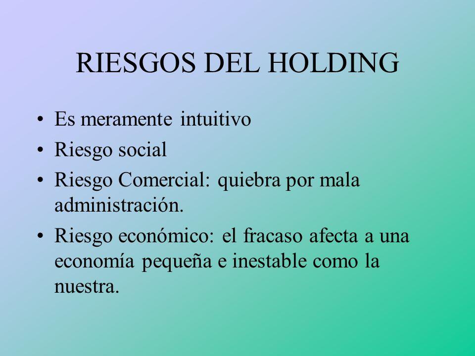 BENEFICIOS DEL HOLDING Monopolio mundial Captación mayor mercado con menor riesgo Ganancia en el margen de comercialización Mejora en el rendimiento d