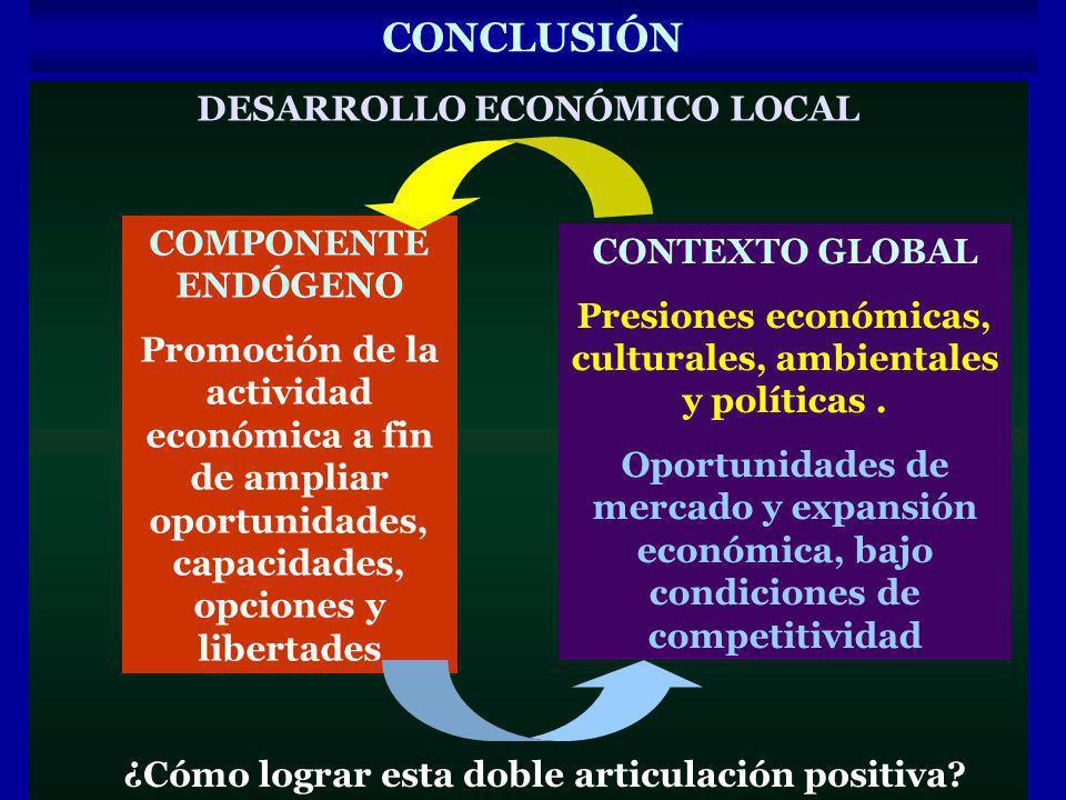 CONCLUSIÓN DESARROLLO ECONÓMICO LOCAL COMPONENTE ENDÓGENO Promoción de la actividad económica a fin de ampliar oportunidades, capacidades, opciones y