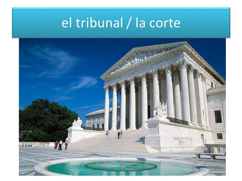 el tribunal / la corte