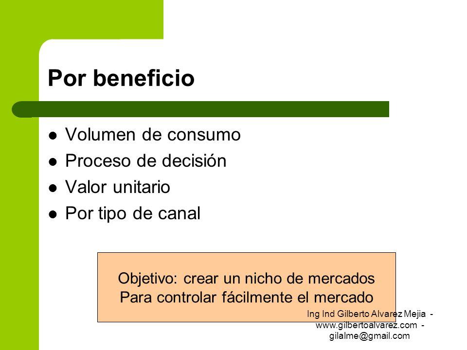 Por beneficio Volumen de consumo Proceso de decisión Valor unitario Por tipo de canal Objetivo: crear un nicho de mercados Para controlar fácilmente e