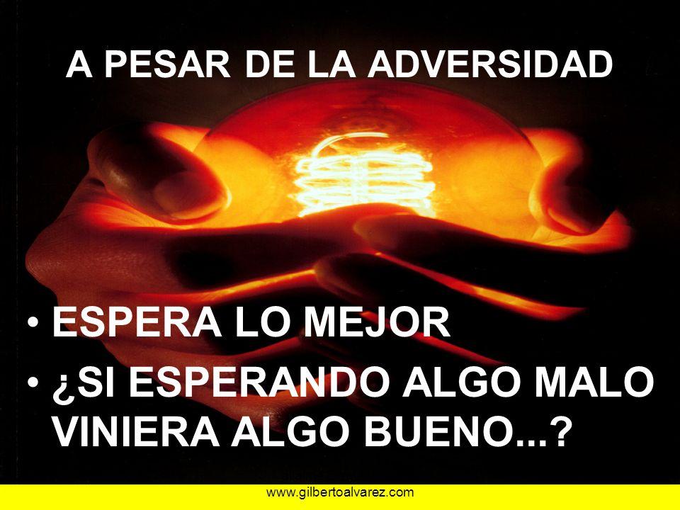 A PESAR DE LA ADVERSIDAD ESPERA LO MEJOR ¿SI ESPERANDO ALGO MALO VINIERA ALGO BUENO...? 25/01/201443gilalme@gmail.com www.gilbertoalvarez.com