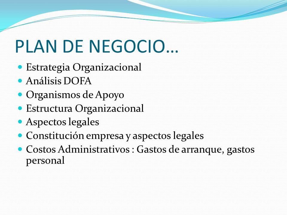 PLAN DE NEGOCIO COSTOS DE PRODUCCION Costos de Producción Infraestructura
