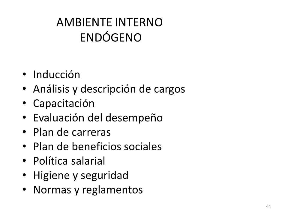 44 Inducción Análisis y descripción de cargos Capacitación Evaluación del desempeño Plan de carreras Plan de beneficios sociales Política salarial Hig