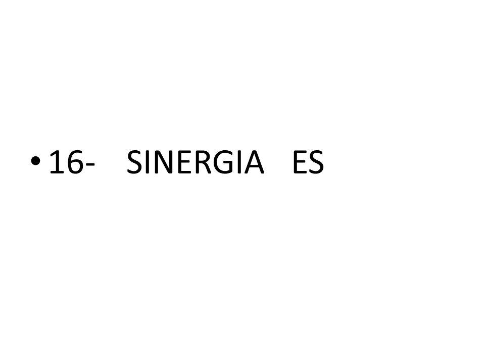 16-SINERGIA ES