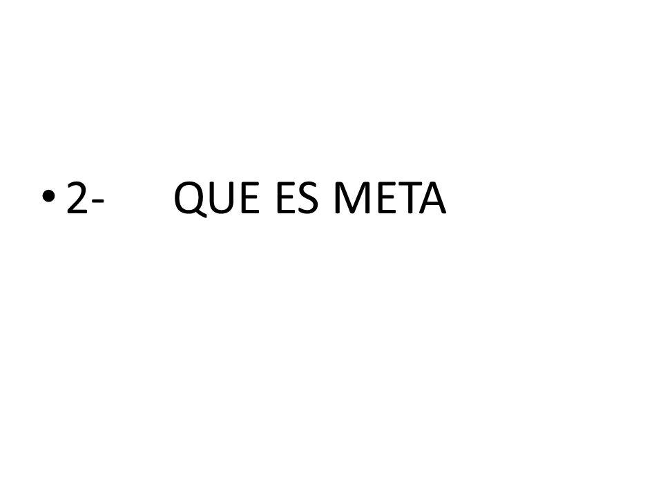 2-QUE ES META