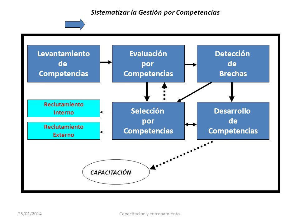 Levantamiento de Competencias Evaluación por Competencias Detección de Brechas Desarrollo de Competencias Selección por Competencias Reclutamiento Ext