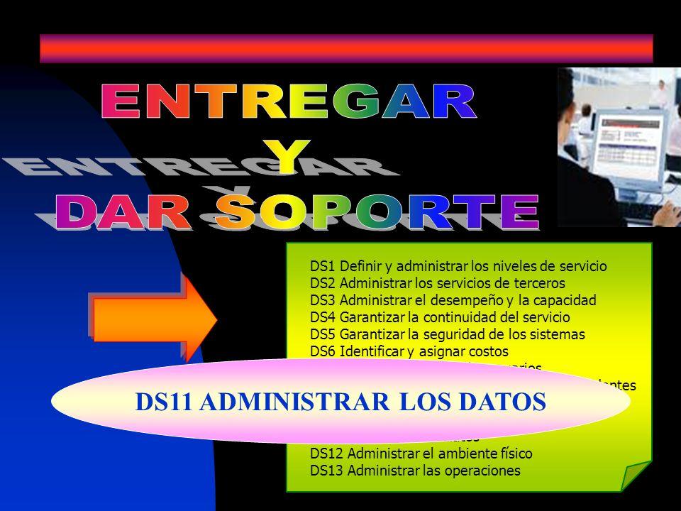 DS1 Definir y administrar los niveles de servicio DS2 Administrar los servicios de terceros DS3 Administrar el desempeño y la capacidad DS4 Garantizar
