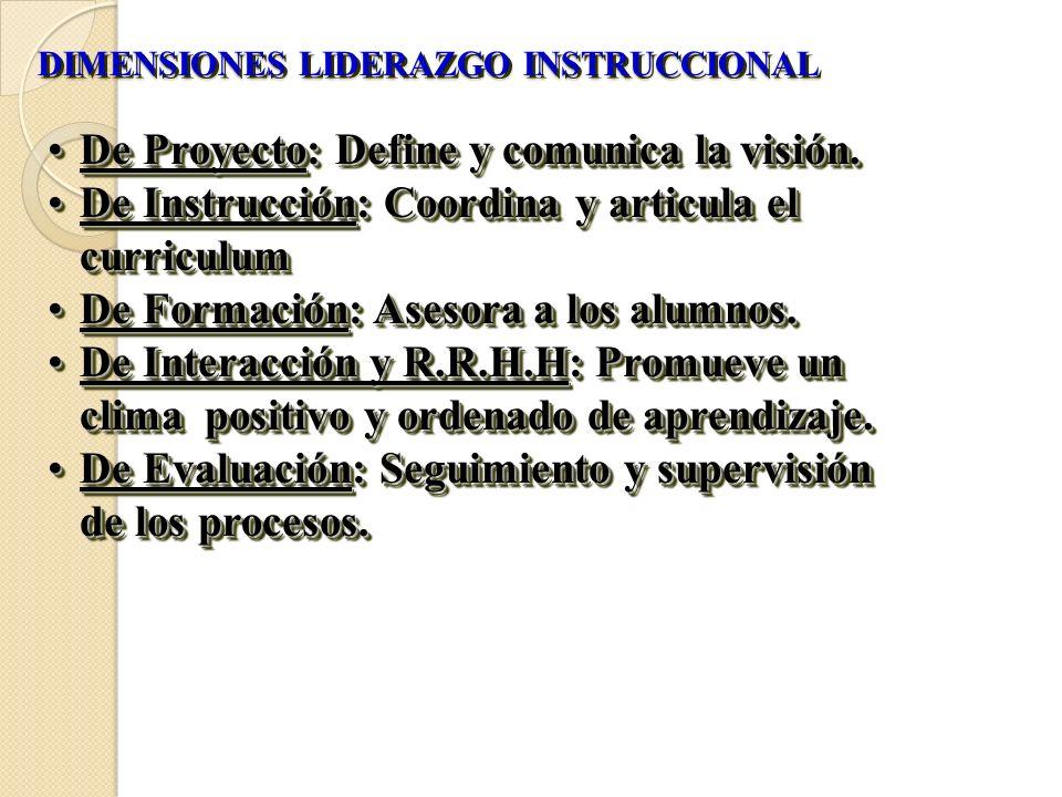 DIMENSIONES LIDERAZGO INSTRUCCIONAL De Proyecto: Define y comunica la visión.De Proyecto: Define y comunica la visión. De Instrucción: Coordina y arti