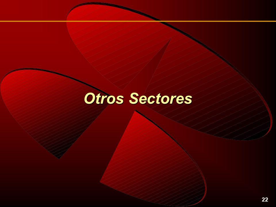 22 Otros Sectores