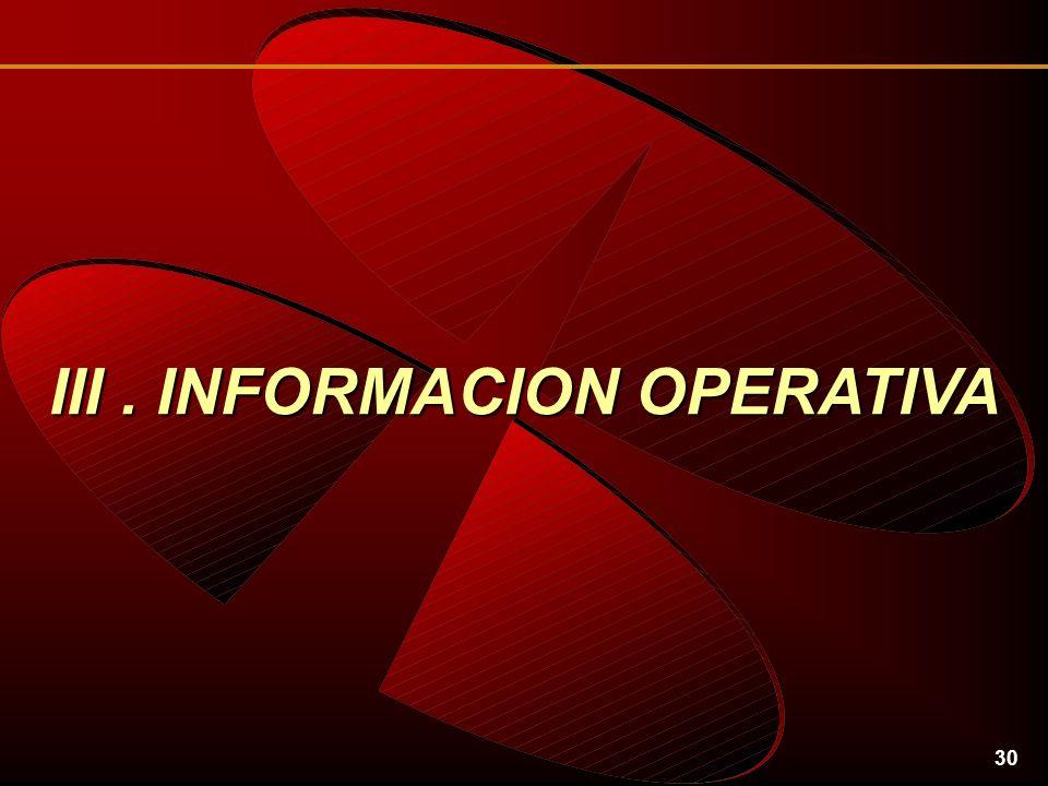 30 III. INFORMACION OPERATIVA