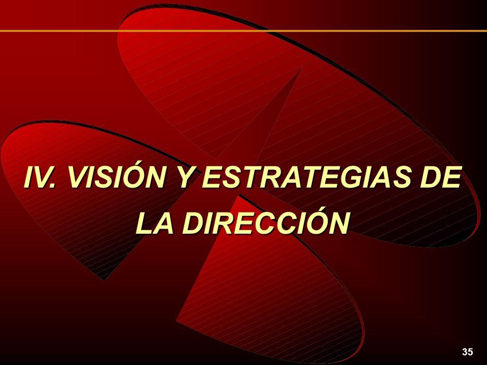 35 IV. VISIÓN Y ESTRATEGIAS DE LA DIRECCIÓN