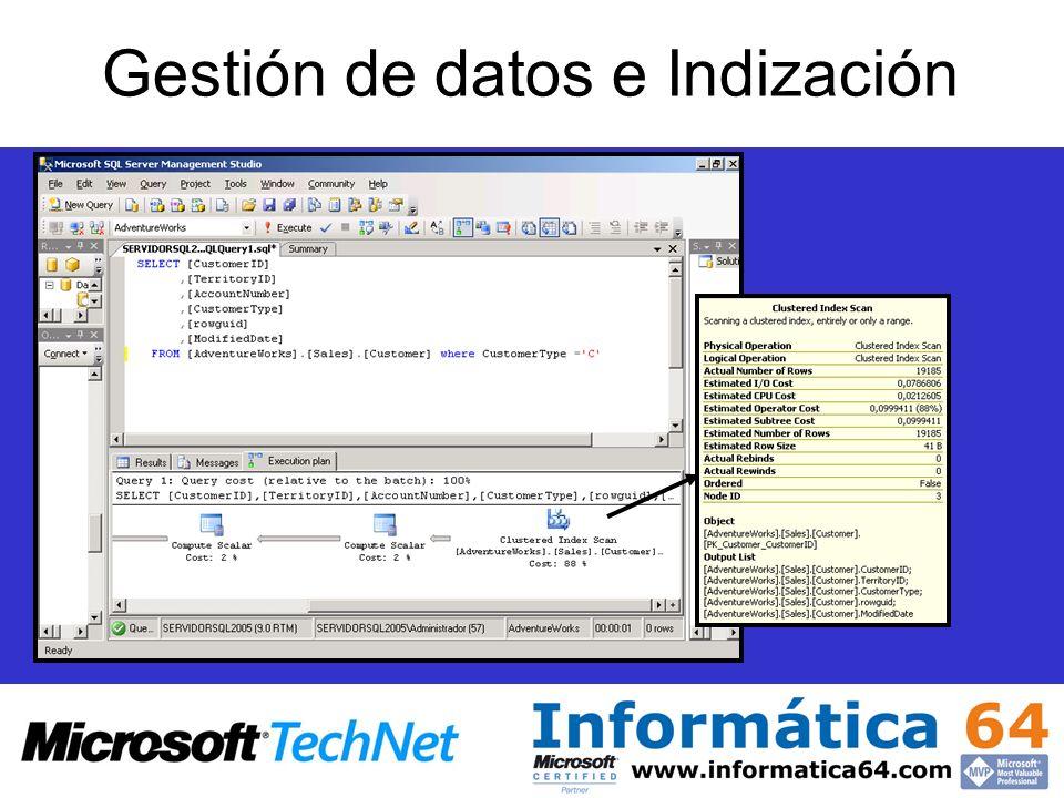 Gestión de datos e Indización