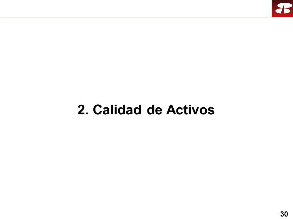 30 2. Calidad de Activos