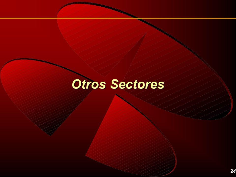 24 Otros Sectores