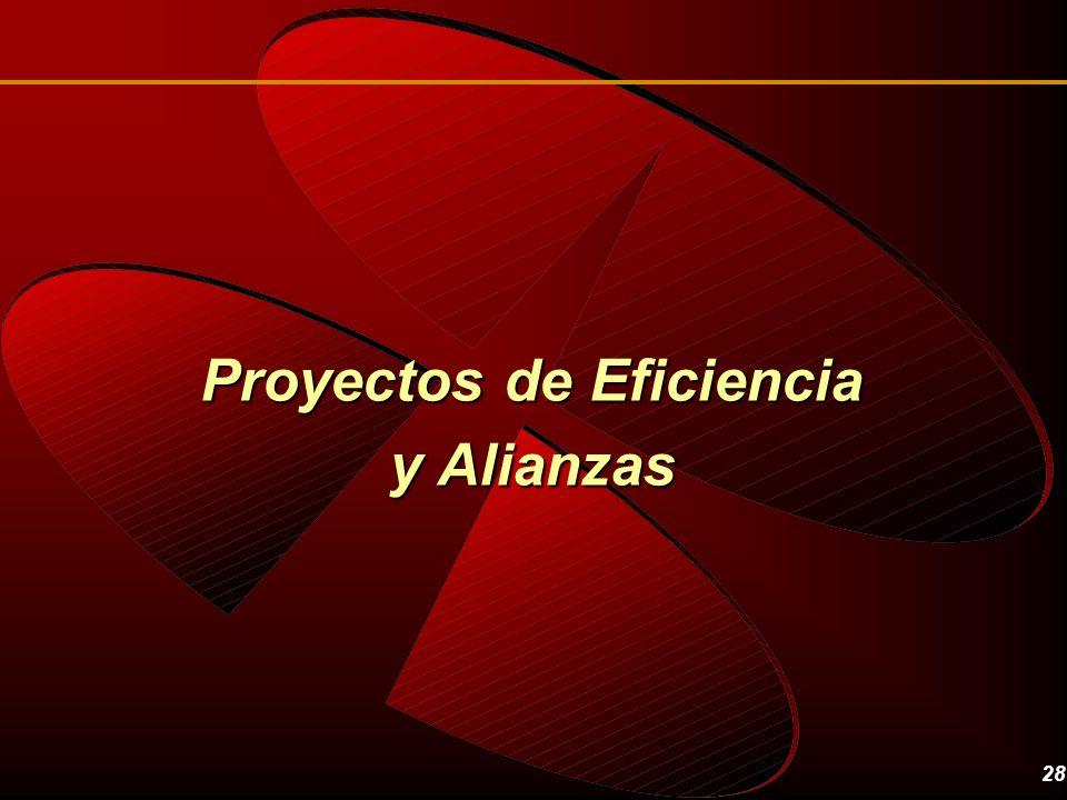 28 Proyectos de Eficiencia y Alianzas