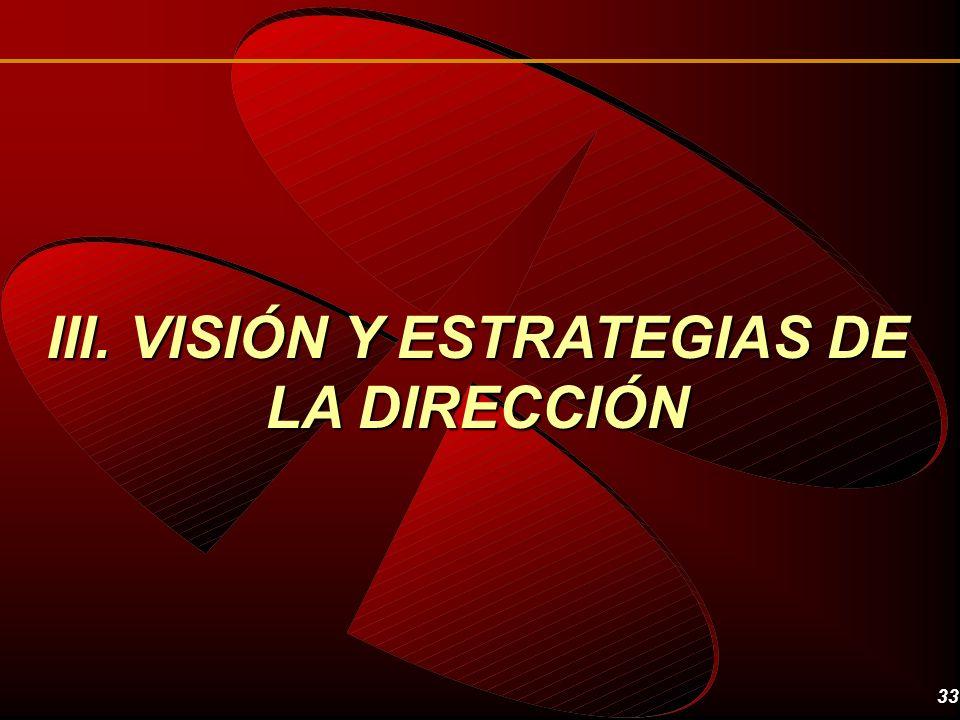 33 III. VISIÓN Y ESTRATEGIAS DE LA DIRECCIÓN