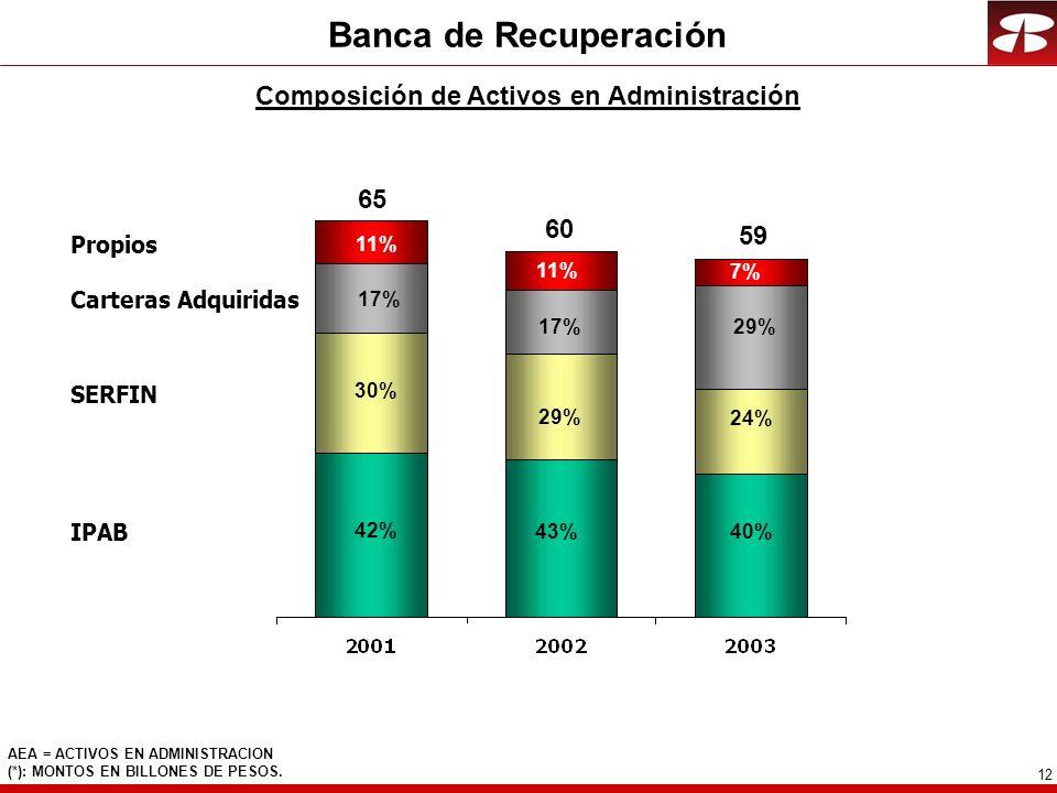 12 Banca de Recuperación Composición de Activos en Administración AEA = ACTIVOS EN ADMINISTRACION (*): MONTOS EN BILLONES DE PESOS.