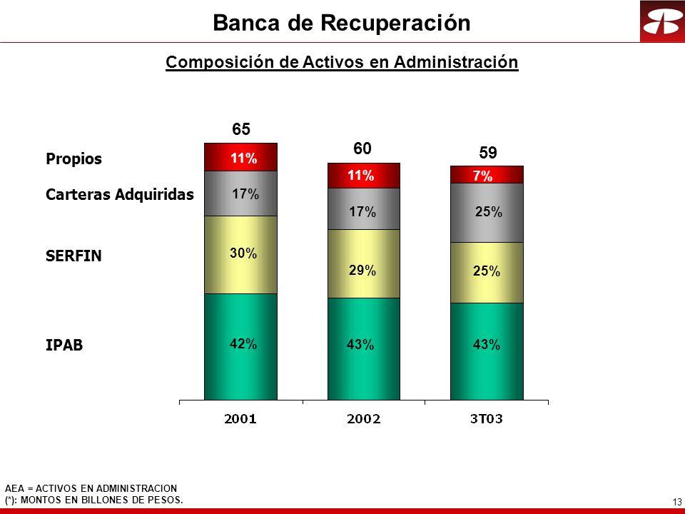 13 Banca de Recuperación Composición de Activos en Administración AEA = ACTIVOS EN ADMINISTRACION (*): MONTOS EN BILLONES DE PESOS.